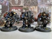 Space Wolf Wolves Terminator Squad